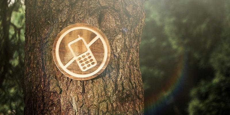 5 Cosas Que Le Suceden A Tu Cerebro Y Cuerpo Despues De Una Desintoxicacion Digital