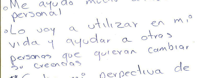 Diplomado (2)